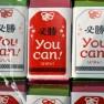 【2016正月休業のご案内】1/1〜1/14 正月休業 「YouCan!(ようかん)」で受験必勝