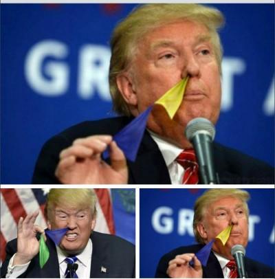 trump_flag_02